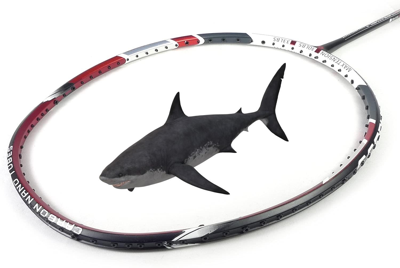 vợt cầu lông apacs